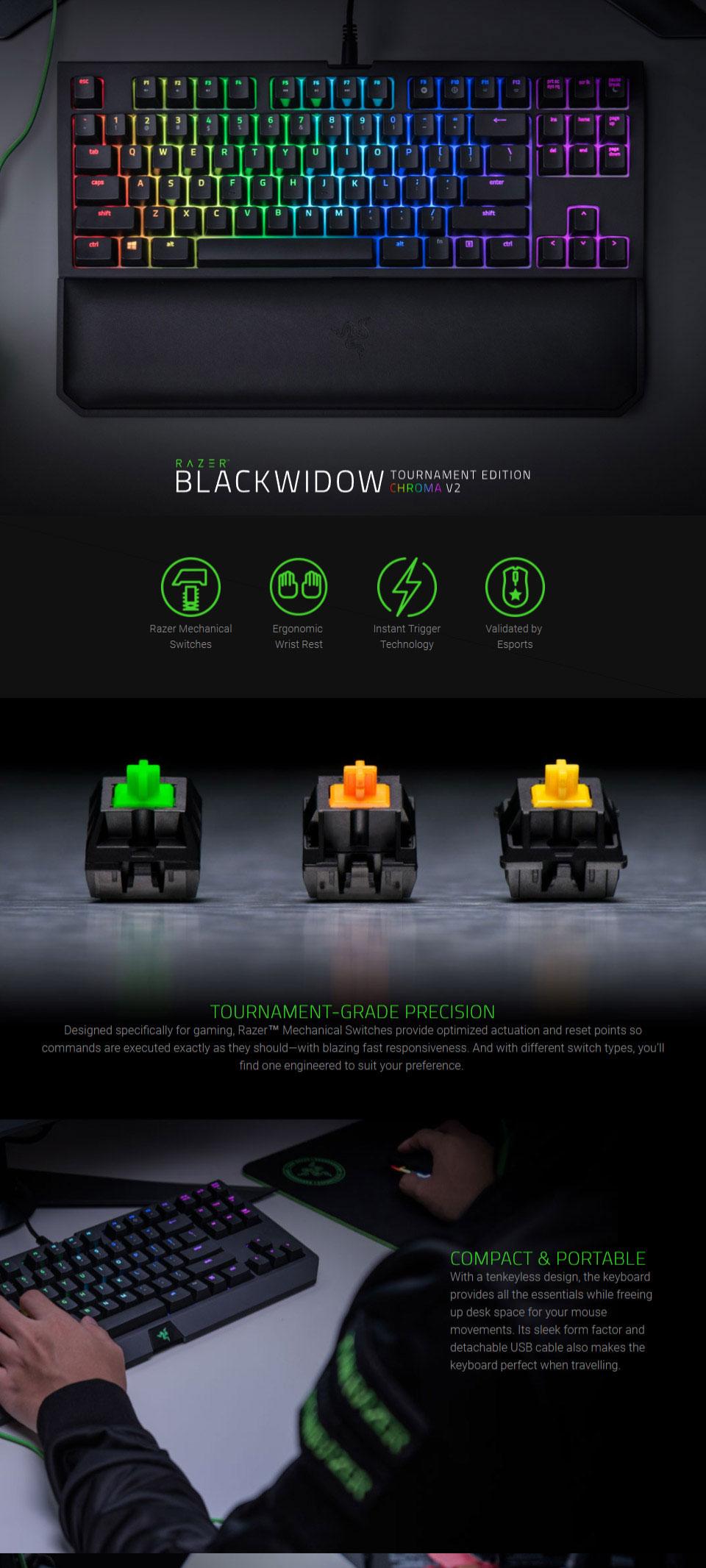 Razer Chroma Blackwidow TE V2 KB (Yellow Switch) and Mamba