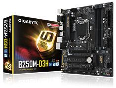 Gigabyte B250M-D3H Motherboard
