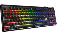 ASUS Cerberus RGB Mechanical Keyboard Kaihua Brown