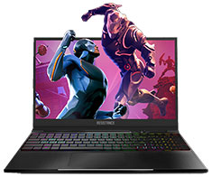 Resistance Striker Core i7 GTX1060 15.6in 144hz Notebook