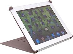 STM Kicker iPad Gen 2, 3 & 4 Case Mushroom